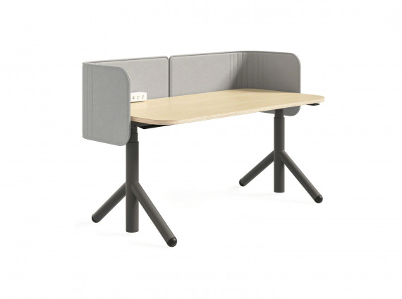 height adjustable desk with privacy